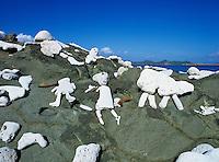 Rock figures<br /> Drunk Bay<br /> St. John<br /> U.S. Virgin Islands