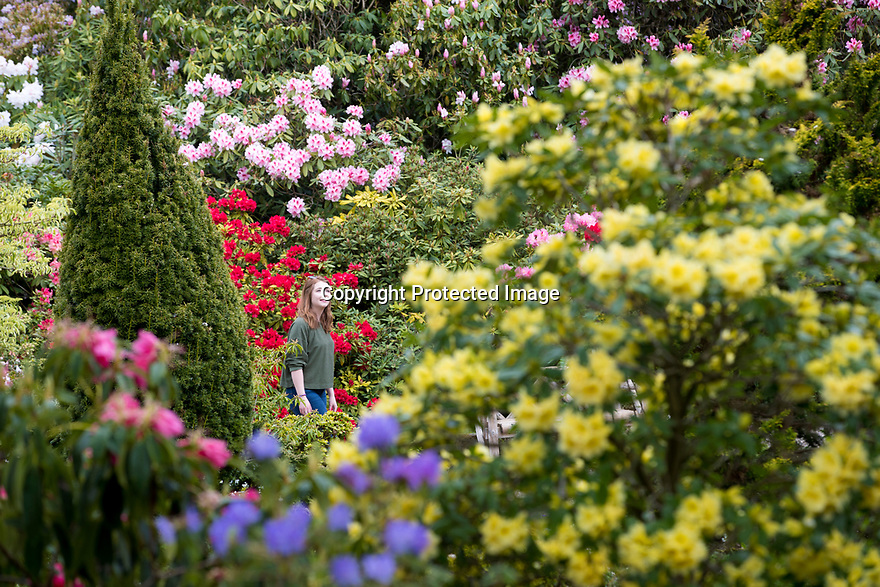 29/04/19<br />