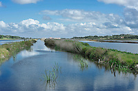 The Portuguese natural park of Comporta covers the river Sado and the peninsula of Troia and lies about an hour outside Lisbon
