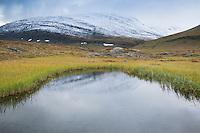 Small pond near Sälka mountain hut along Kungsleden trail, Lappland, Sweden