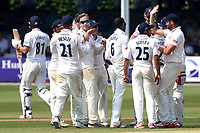 Simon Harmer of Essex is congratulated by his team mates after taking the wicket of Rikki Clarke during Essex CCC vs Warwickshire CCC, Specsavers County Championship Division 1 Cricket at The Cloudfm County Ground on 21st June 2017