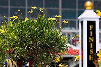 BALTIMORE, MD - MAY 19:  Finish line from winners circle on Black-Eyed Susan Day at Pimlico Race Course on May 19, 2017 in Baltimore, Maryland.(Photo by Sue Kawczynski/Eclipse Sportswire/Getty Images)