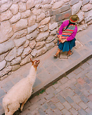 PERU, Cusco, South America, Latin America, high angle view of a woman pulling Ilama in Cusco.