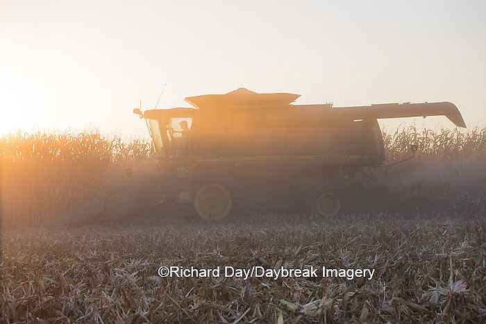 63801-06805 John Deere combine harvesting corn at sunset, Marion Co., IL
