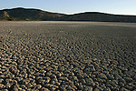 February 16, 2004. St. Marc, Haiti. Dry lake bed.
