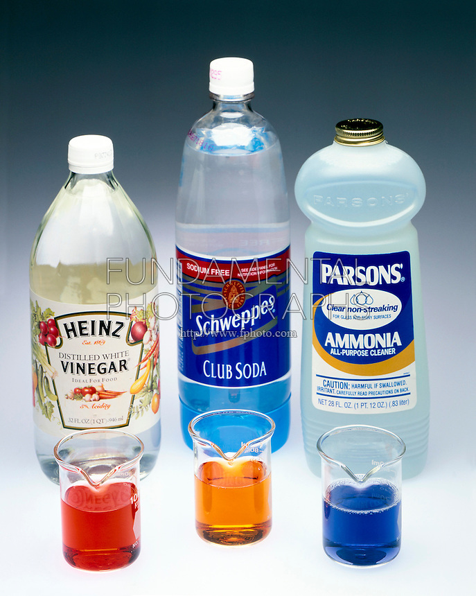 pH INDICATOR: VINEGAR, CLUB SODA & AMMONIA<br />