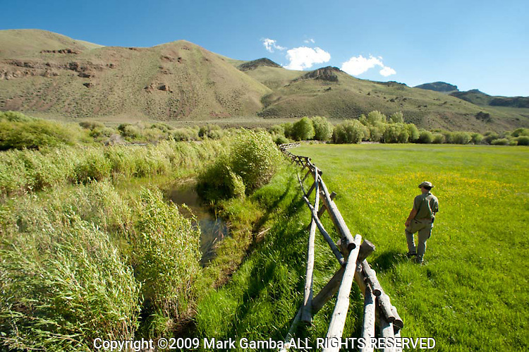 Jude Trapani at a fence separating the riverine riparian area  from cattle pasture on the  East Fork of the Salmon River