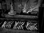 The Pilchard Works.<br />