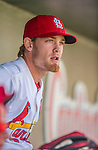 4 March 2013: St. Louis Cardinals infielder Ryan Jackson sits in the dugout prior to a Spring Training game against the Minnesota Twins at Roger Dean Stadium in Jupiter, Florida. The Twins shut out the Cardinals 7-0 in Grapefruit League play. Mandatory Credit: Ed Wolfstein Photo *** RAW (NEF) Image File Available ***