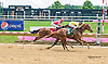 Gansett Bay winning at Delaware Park on 7/6/15