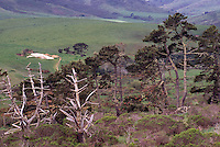 Farmland in Point Reyes National Seashore, California, USA