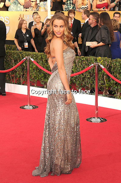LOS ANGELES, CA- JANUARY 18: Actress Sofia Vergara arrives at the 20th Annual Screen Actors Guild Awards at The Shrine Auditorium on January 18, 2014 in Los Angeles, California.<br /> Credit: Mayer/face to face<br /> - No Rights for USA, Canada and France -