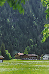 Smoke billowing from farm buildings against a background of pine trees. Nesselwänkle, Reutte district, Tyrol, Austria.