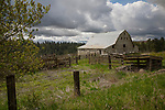 Washington, Eastern, Steptoe, Palouse Region. An old gray barn under cloudy skies in spring.