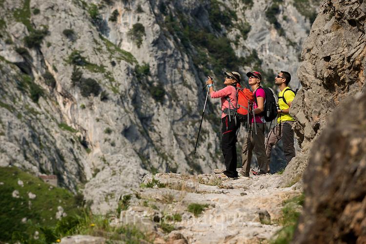 Trekkers walks the trail through the Cares Gorge, Picos de Europa National Park, Leon, Asturias, Spain