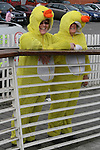 Anne Delaney and Bridie Lynch 2010 Patricks Day Duck Race...Photo NEWSFILE/Jenny Matthews.(Photo credit should read Jenny Matthews/NEWSFILE)....This Picture has been sent you under the condtions enclosed by:.Newsfile Ltd..The Studio,.Millmount Abbey,.Drogheda,.Co Meath..Ireland..Tel: +353(0)41-9871240.Fax: +353(0)41-9871260.GSM: +353(0)86-2500958.email: pictures@newsfile.ie.www.newsfile.ie.FTP: 193.120.102.198.