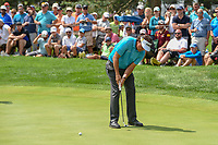 Phil Mickelson (USA)watches his putt on 3 during 1st round of the World Golf Championships - Bridgestone Invitational, at the Firestone Country Club, Akron, Ohio. 8/2/2018.<br /> Picture: Golffile | Ken Murray<br /> <br /> <br /> All photo usage must carry mandatory copyright credit (&copy; Golffile | Ken Murray)