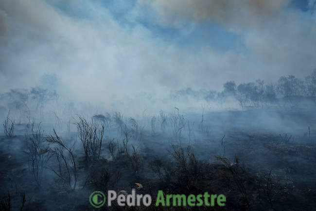 General view of a wildfire in Cualedro, near Ourense on August 24, 2013 (c) Pedro ARMESTRE.
