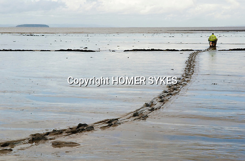 The Last Mudhorse Fishermen. UK 2008. The Sellick family, Stolford, Bridgewater Bay, Somerset. Adrian pusing Mudhorse out to nets at low tide.