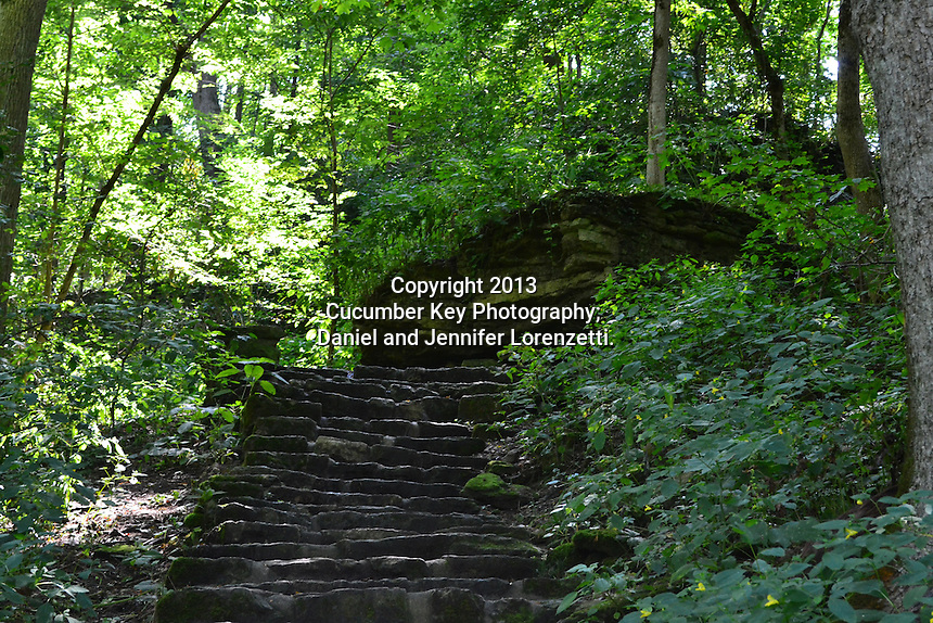 A beautiful rock staircase at Glen Helen Nature Preserve.