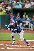 Edwin Sano (5) of the Rocky Mountain Vibes bunts against the Ogden Raptors at Lindquist Field on July 4, 2019 in Ogden, Utah. The Raptors defeated the Vibes 4-2. (Stephen Smith/Four Seam Images)