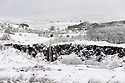 A waterfall flows as fresh snow covers fields in the hills above Belfast, County Antrim, Friday, December 8th, 2017. Photo/Paul McErlane