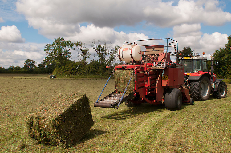 Tractors making hay into bales in traditional hay meadow. This has been left late enough to allow the wildflowers to set seed. Clattinger Farm, Wiltshire. UK. . This habitat has been reduced by 98% in the UK since the Second World War. This is largely due to the intensification of farming practices.