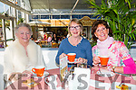 Attending the paint it pink coffee morning and Fashion Show at Ballyseedy Garden Centre  for the Irish Cancer Society on Friday were l-r Veda Blennerhasset, Carol Leen and Breda Hanley.