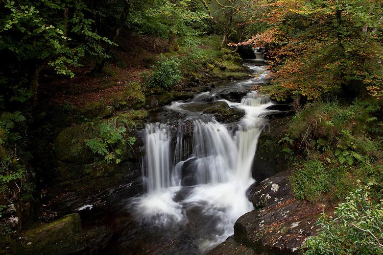 Waterfall on Torc Mountain, Kerry, in Killarney National Park, Ireland
