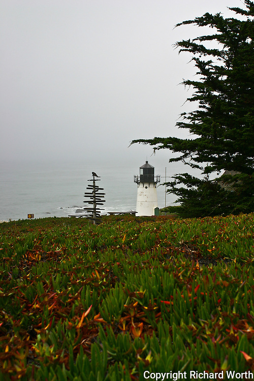 Ice plant, non-native invader, drops a mostly green carpet to the Point Montara Light Station, which, in turn, ooks out on the vast gray expanse of the Pacific.