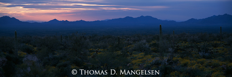 Sunset over the Kofa National Wildlife Refuge in Arizona.