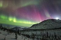 The northern lights burst into a colorful display during a night of high aurora activity in the White Mountains Recreation Area in Alaska's interior. March 17, 2013