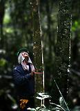 Reconocimiento ambiental, consultora ASI, Campo Rubiales, Meta, Colombia.