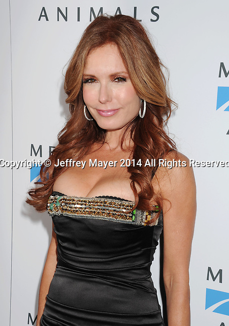 WEST HOLLYWOOD, CA- SEPTEMBER 12: Actress Tracey E. Bregman  attends Mercy For Animals 15th Anniversary Gala at The London on September 12, 2014 in West Hollywood, California.