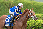 #3 Qurbaan wins the Bernard Baruch H. (gr 2) ridden by Joel Rosario, trained H Motion. Sept. 2,2109: during racing at Saratoga Race Course in Saratoga Springs, New York. Robert Simmons/Eclipse Sportswire/CSM