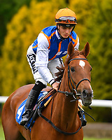 Madeline Bond ridden by Harry Bentley goes down to the start of The British Stallion Studs EBF Margadale Fillies' Handicap during Evening Racing at Salisbury Racecourse on 11th June 2019