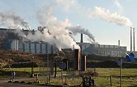 Nederland - Wijk aan Zee - december 2019. Een Zee van Staal. Tentoonstelling van beelden gemaakt van staal. Op de achtergrond Tata Steel.   Foto Berlinda van Dam / Hollandse Hoogte