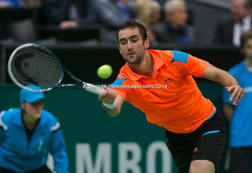 11-02-14, Netherlands,Rotterdam,Ahoy, ABNAMROWTT,Marin Cilic(KRO)<br /> Photo:Tennisimages/Henk Koster