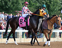 October 06, 2018 : #8 Curlin's Approval and Tyler Gaffalione in the 38th running of the Thoroughbred Club of America (Grade 2) $250,000 at Keeneland Race Course on October 06, 2018 in Lexington, KY.  Candice Chavez/ESW/CSM