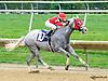 Molten Steel winning at Delaware Park on 9/30/15