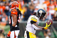 DeAngelo Williams #34 of the Pittsburgh Steelers celebrates his touchdown in the first quarter against the Cincinnati Bengals during the game at Paul Brown Stadium on December 12, 2015 in Cincinnati, Ohio. (Photo by Jared Wickerham/DKPittsburghSports)
