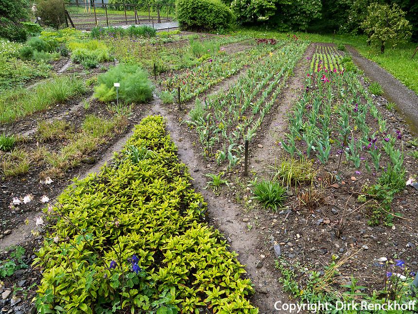 biodynamischer Garten, Schloss Wartegg in Rohrschacherberg, Kanton Thurgau , Schweiz<br /> biodynamic garden, castle Wartegg, Canton Thurgau, Switzerland
