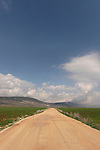 Israel, the Lower Galilee. A road in Beth Natofa valley.