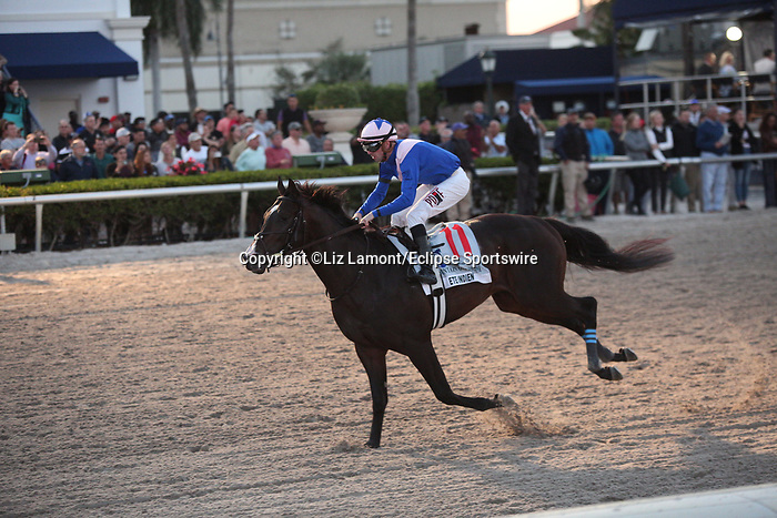February 29, 2020: #11 Ete Indien with jockey Florent Geroux on board, wins the Fountain of Youth Stakes GII, on February 29th, 2020 at Gulfstream Park in Hallandale Beach, Florida. LizLamont/Eclipse Sportswire/CSM