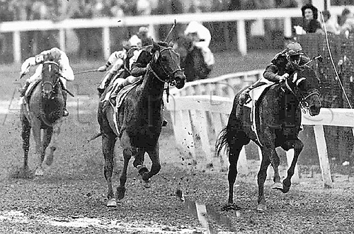 04.29.1948. Kentucky, USA. Citation, center, about to pass stable mate Coaltown in the 1948 Kentucky Derby. Citation also won the Triple Crown that year. He won 19 of 20 races in 1948, and was the first horse to win more than $1 million in his career.