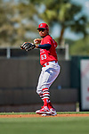 28 February 2019: St. Louis Cardinals top prospect infielder Edmundo Sosa in action during a Spring Training game against the New York Mets at Roger Dean Stadium in Jupiter, Florida. The Mets defeated the Cardinals 3-2 in Grapefruit League play. Mandatory Credit: Ed Wolfstein Photo *** RAW (NEF) Image File Available ***