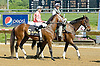 Malibu Glow before The Joseph French Memorial Stakes at Delaware Park on 5/19/12