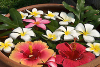 Thailand, Southern Thailand, Province Surat Thani, Ko Samui island: Flower decoration with Hibiscus | Thailand, Suedthailand, Provinz Surat Thani, Insel Ko Samui: Blumendekoration aus Hibiskusblueten und Frangipaniblueten