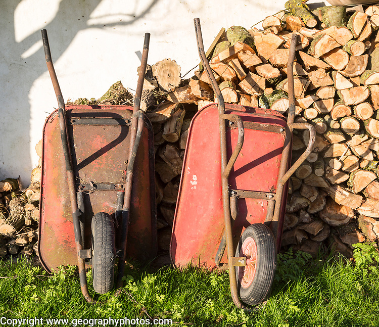 Two old red metal wheelbarrows leaning against pile wood logs in garden, Cherhill, Wiltshire, England, UK