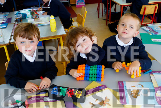 Copy Book<br /> ---------------<br /> At their first day at school in Flemby NS, Ballymac last Wednesday were Luke Sheehy, Adam O'Shea and Amari Pabon.